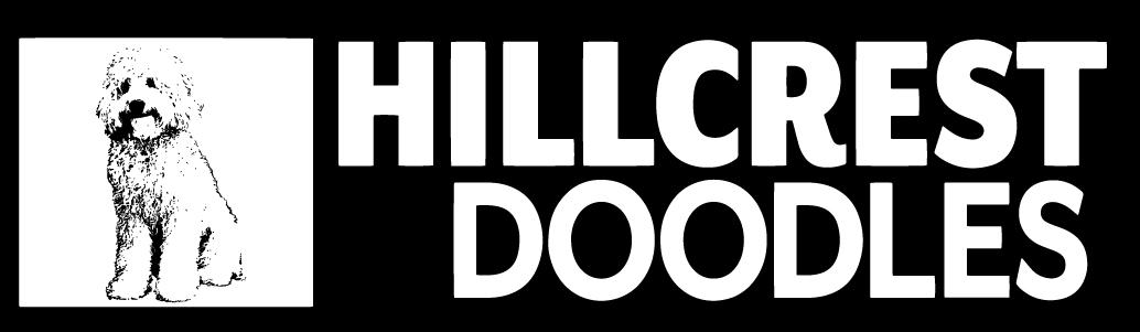 Hillcrest Doodles